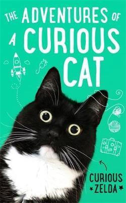 The Adventures of a Curious Cat - pr_398781