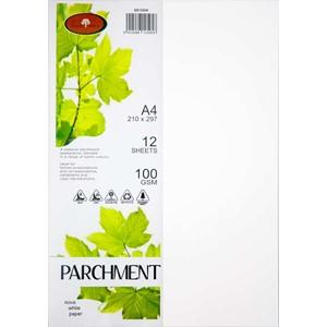 Parchment  Paper A4 100gsm Nova White Pack 12