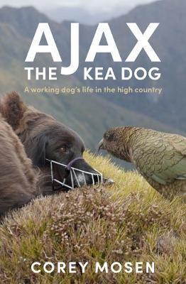 Ajax the Kea Dog - pr_428950